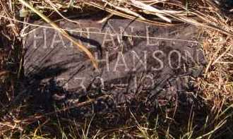 HANSON, HARLAN L - Moody County, South Dakota | HARLAN L HANSON - South Dakota Gravestone Photos