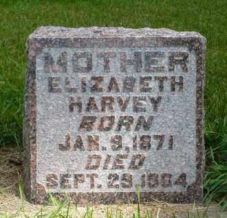 HARVEY, ELIZABETH - Moody County, South Dakota | ELIZABETH HARVEY - South Dakota Gravestone Photos
