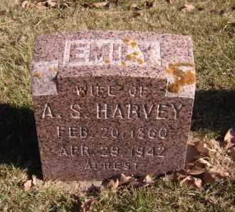 HARVEY, EMILY - Moody County, South Dakota | EMILY HARVEY - South Dakota Gravestone Photos