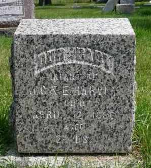 HARVEY, INFANT - Moody County, South Dakota | INFANT HARVEY - South Dakota Gravestone Photos