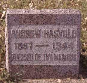 HASVOLD, ANDREW - Moody County, South Dakota | ANDREW HASVOLD - South Dakota Gravestone Photos