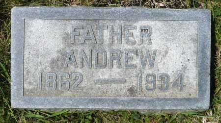 JOHNSON, ANDREW - Moody County, South Dakota | ANDREW JOHNSON - South Dakota Gravestone Photos