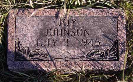 JOHNSON, JOY - Moody County, South Dakota | JOY JOHNSON - South Dakota Gravestone Photos