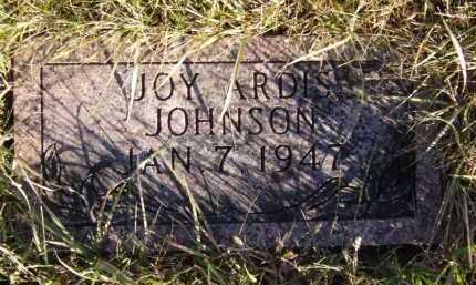JOHNSON, JOY ARDIS - Moody County, South Dakota | JOY ARDIS JOHNSON - South Dakota Gravestone Photos