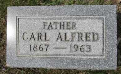 LARSON, CARL ALFRED - Moody County, South Dakota | CARL ALFRED LARSON - South Dakota Gravestone Photos