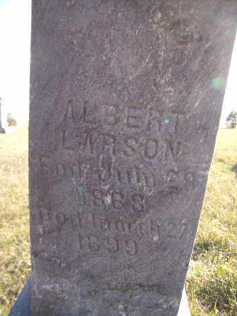 LARSON, ALBERT (CLOSEUP) - Moody County, South Dakota | ALBERT (CLOSEUP) LARSON - South Dakota Gravestone Photos