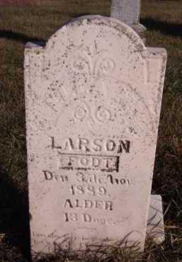 LARSON, ELLA M (?) - Moody County, South Dakota | ELLA M (?) LARSON - South Dakota Gravestone Photos
