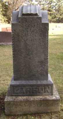 LARSON, JENS - Moody County, South Dakota | JENS LARSON - South Dakota Gravestone Photos