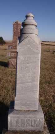LARSON, H ELLEN - Moody County, South Dakota   H ELLEN LARSON - South Dakota Gravestone Photos