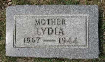 LARSON, LYDIA - Moody County, South Dakota   LYDIA LARSON - South Dakota Gravestone Photos