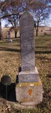 LARSON, N P - Moody County, South Dakota   N P LARSON - South Dakota Gravestone Photos
