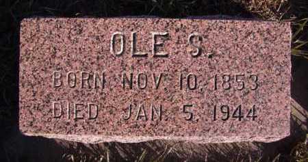 LARSON, OLE S - Moody County, South Dakota | OLE S LARSON - South Dakota Gravestone Photos