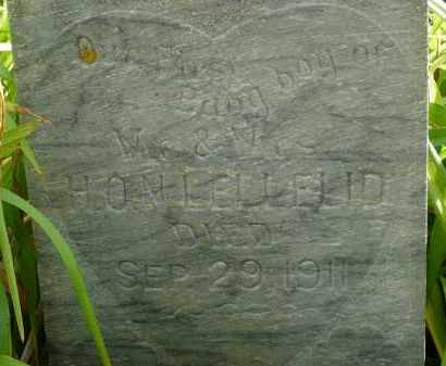 LELLELID, BABY BOY (CLOSE UP) - Moody County, South Dakota | BABY BOY (CLOSE UP) LELLELID - South Dakota Gravestone Photos