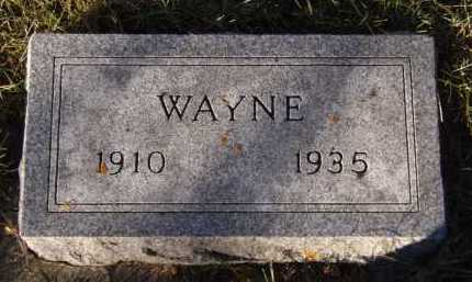 LEVEA, WAYNE - Moody County, South Dakota | WAYNE LEVEA - South Dakota Gravestone Photos