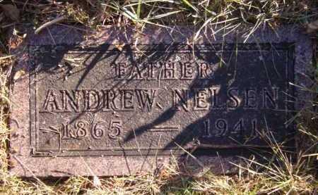 NELSEN, ANDREW - Moody County, South Dakota | ANDREW NELSEN - South Dakota Gravestone Photos
