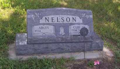 NELSON, ARLYS - Moody County, South Dakota   ARLYS NELSON - South Dakota Gravestone Photos