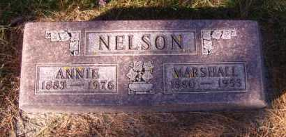 NELSON, ANNIE - Moody County, South Dakota | ANNIE NELSON - South Dakota Gravestone Photos