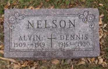 NELSON, ALVIN - Moody County, South Dakota | ALVIN NELSON - South Dakota Gravestone Photos