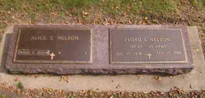 NELSON, FLOYD L - Moody County, South Dakota | FLOYD L NELSON - South Dakota Gravestone Photos