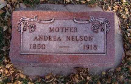 NELSON, ANDREA - Moody County, South Dakota | ANDREA NELSON - South Dakota Gravestone Photos