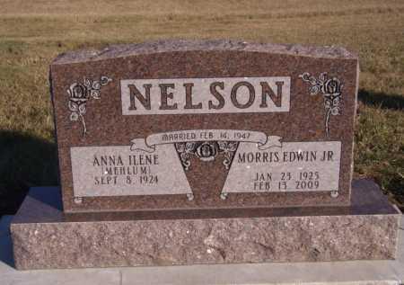 NELSON, ANNA ILENE - Moody County, South Dakota | ANNA ILENE NELSON - South Dakota Gravestone Photos
