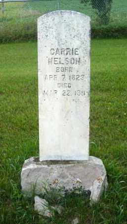 NELSON, CARRIE - Moody County, South Dakota | CARRIE NELSON - South Dakota Gravestone Photos