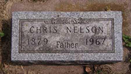NELSON, CHRIS - Moody County, South Dakota | CHRIS NELSON - South Dakota Gravestone Photos