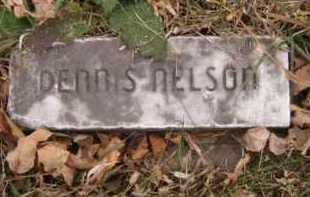 NELSON, DENNIS - Moody County, South Dakota | DENNIS NELSON - South Dakota Gravestone Photos