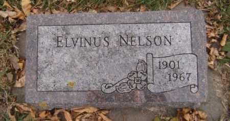 NELSON, ELVINUS - Moody County, South Dakota | ELVINUS NELSON - South Dakota Gravestone Photos