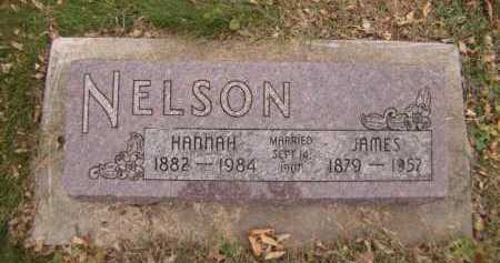 NELSON, HANNAH - Moody County, South Dakota | HANNAH NELSON - South Dakota Gravestone Photos