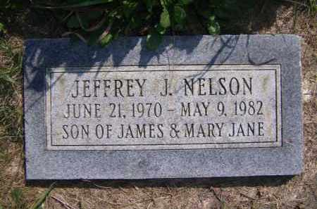 NELSON, JEFFREY J - Moody County, South Dakota | JEFFREY J NELSON - South Dakota Gravestone Photos