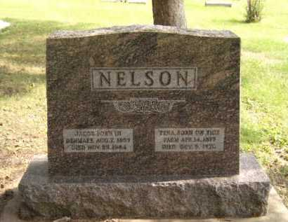 NELSON, JACOB - Moody County, South Dakota | JACOB NELSON - South Dakota Gravestone Photos