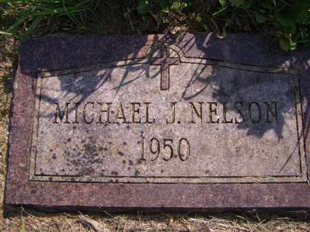 NELSON, MICHAEL J - Moody County, South Dakota | MICHAEL J NELSON - South Dakota Gravestone Photos