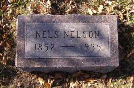 NELSON, NELS - Moody County, South Dakota | NELS NELSON - South Dakota Gravestone Photos