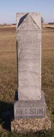 NELSON, OLE - Moody County, South Dakota | OLE NELSON - South Dakota Gravestone Photos