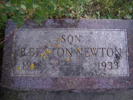 NEWTON, B. BENTON - Moody County, South Dakota | B. BENTON NEWTON - South Dakota Gravestone Photos