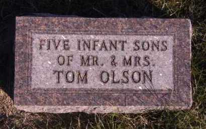 OLSON, FIVE INFANT SONS - Moody County, South Dakota | FIVE INFANT SONS OLSON - South Dakota Gravestone Photos