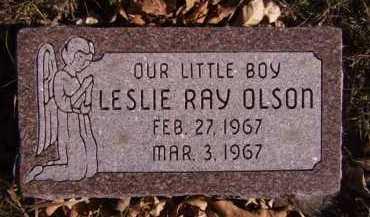 OLSON, LESLIE RAY - Moody County, South Dakota   LESLIE RAY OLSON - South Dakota Gravestone Photos