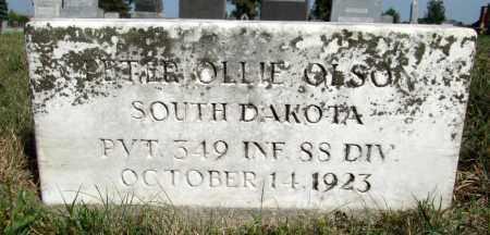 OLSON, PETER OLLIE - Moody County, South Dakota   PETER OLLIE OLSON - South Dakota Gravestone Photos