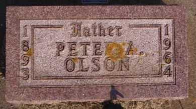 OLSON, PETER A - Moody County, South Dakota   PETER A OLSON - South Dakota Gravestone Photos