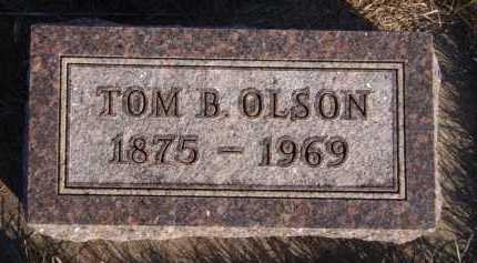 OLSON, TOM B - Moody County, South Dakota | TOM B OLSON - South Dakota Gravestone Photos
