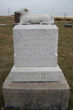 SIMONS, BURTON SYLVESTER - Moody County, South Dakota | BURTON SYLVESTER SIMONS - South Dakota Gravestone Photos
