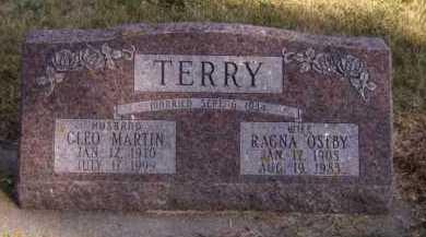 TERRY, CLEO MARTIN - Moody County, South Dakota | CLEO MARTIN TERRY - South Dakota Gravestone Photos