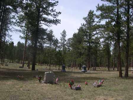 *BELL PARK / ROCHFORD CEMETERY, VIEW OF - Pennington County, South Dakota | VIEW OF *BELL PARK / ROCHFORD CEMETERY - South Dakota Gravestone Photos
