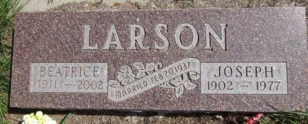 LARSON, JOSEPH - Pennington County, South Dakota | JOSEPH LARSON - South Dakota Gravestone Photos