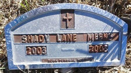 MEEKS, SHADY LANE - Pennington County, South Dakota   SHADY LANE MEEKS - South Dakota Gravestone Photos