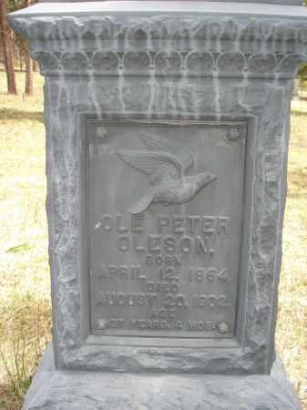 OLESON, OLE PETER - Pennington County, South Dakota   OLE PETER OLESON - South Dakota Gravestone Photos