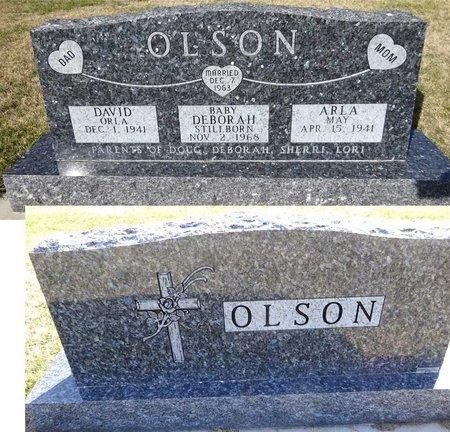 OLSON, ARLA - Pennington County, South Dakota | ARLA OLSON - South Dakota Gravestone Photos