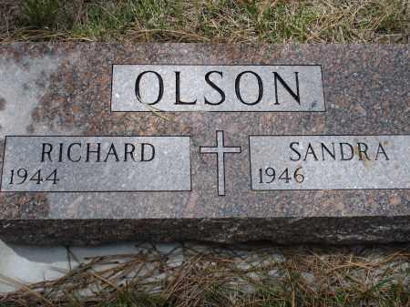 OLSON, SANDRA - Pennington County, South Dakota | SANDRA OLSON - South Dakota Gravestone Photos