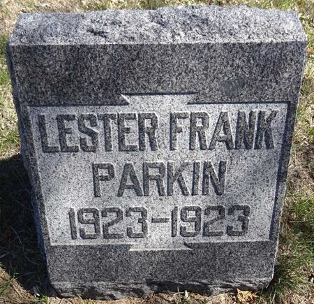 PARKIN, LESTER FRANK - Pennington County, South Dakota | LESTER FRANK PARKIN - South Dakota Gravestone Photos